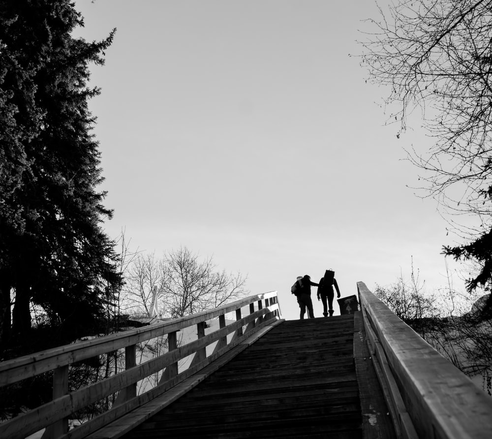 two people in a stairs near tree grey-scale photography
