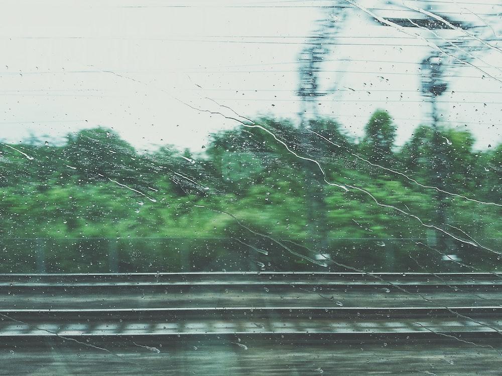 photo of rain drops