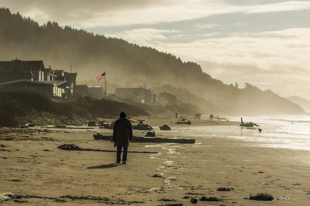 person walking on sea shore