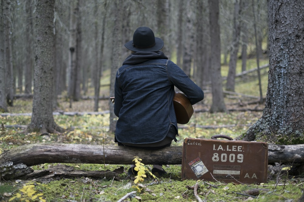 person playing guitar in forest