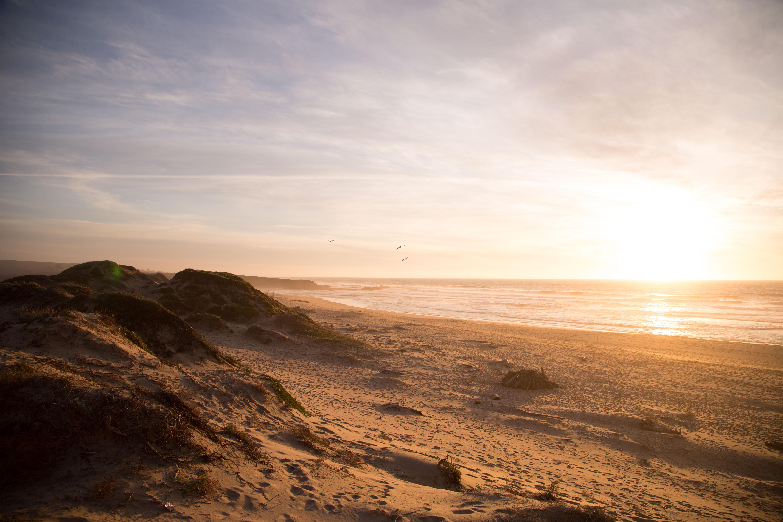 beachfront during sunset