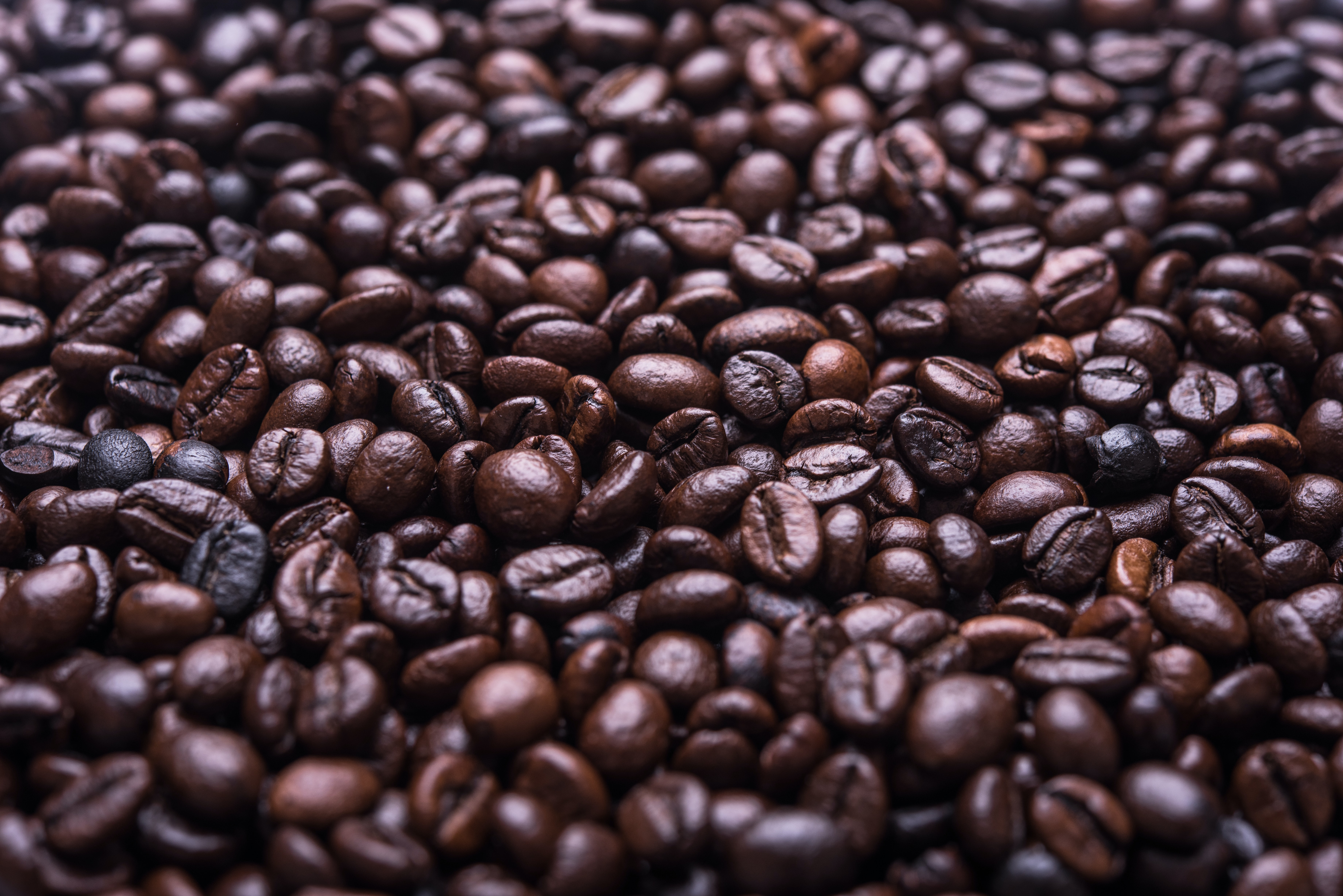 photograph of roasted coffee beans