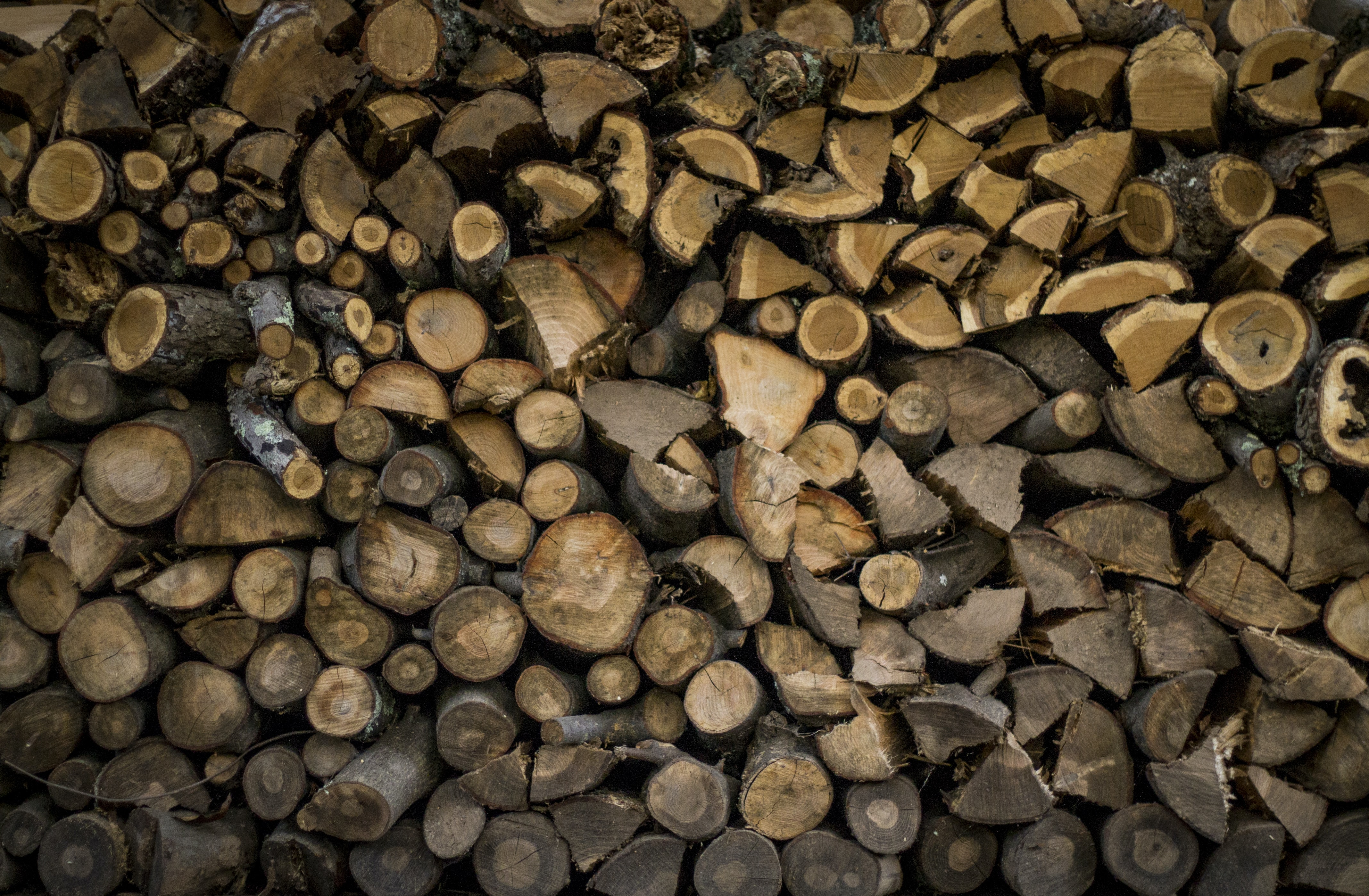 A pile of dark brown firewood in various shapes and sizes