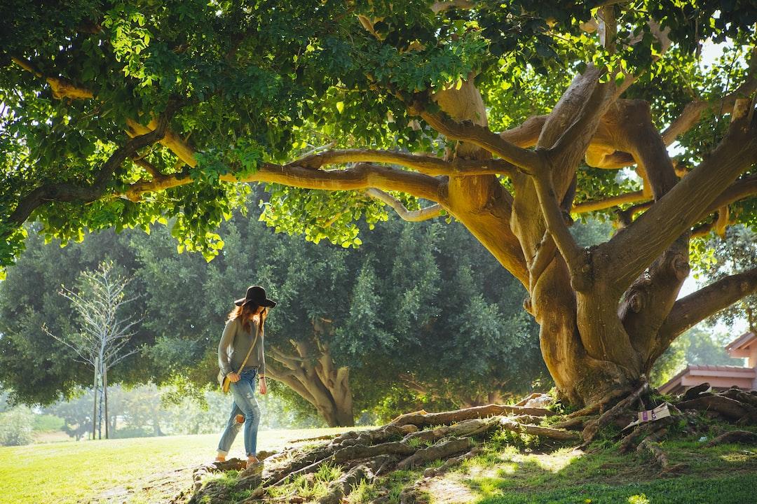 A woman wearing a black hat, boyfriend jeans, and crossbody bag walking underneath a tree