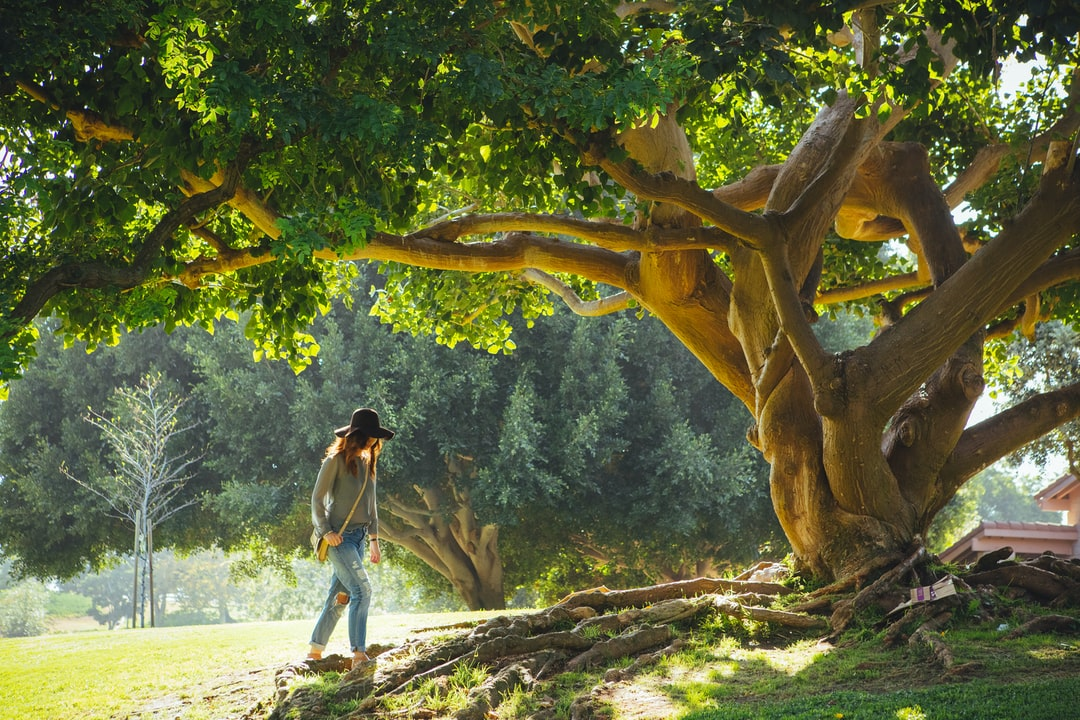 A woman wearing a black hat, boyfriend jeans, and crossbody bag walking underneath a tree