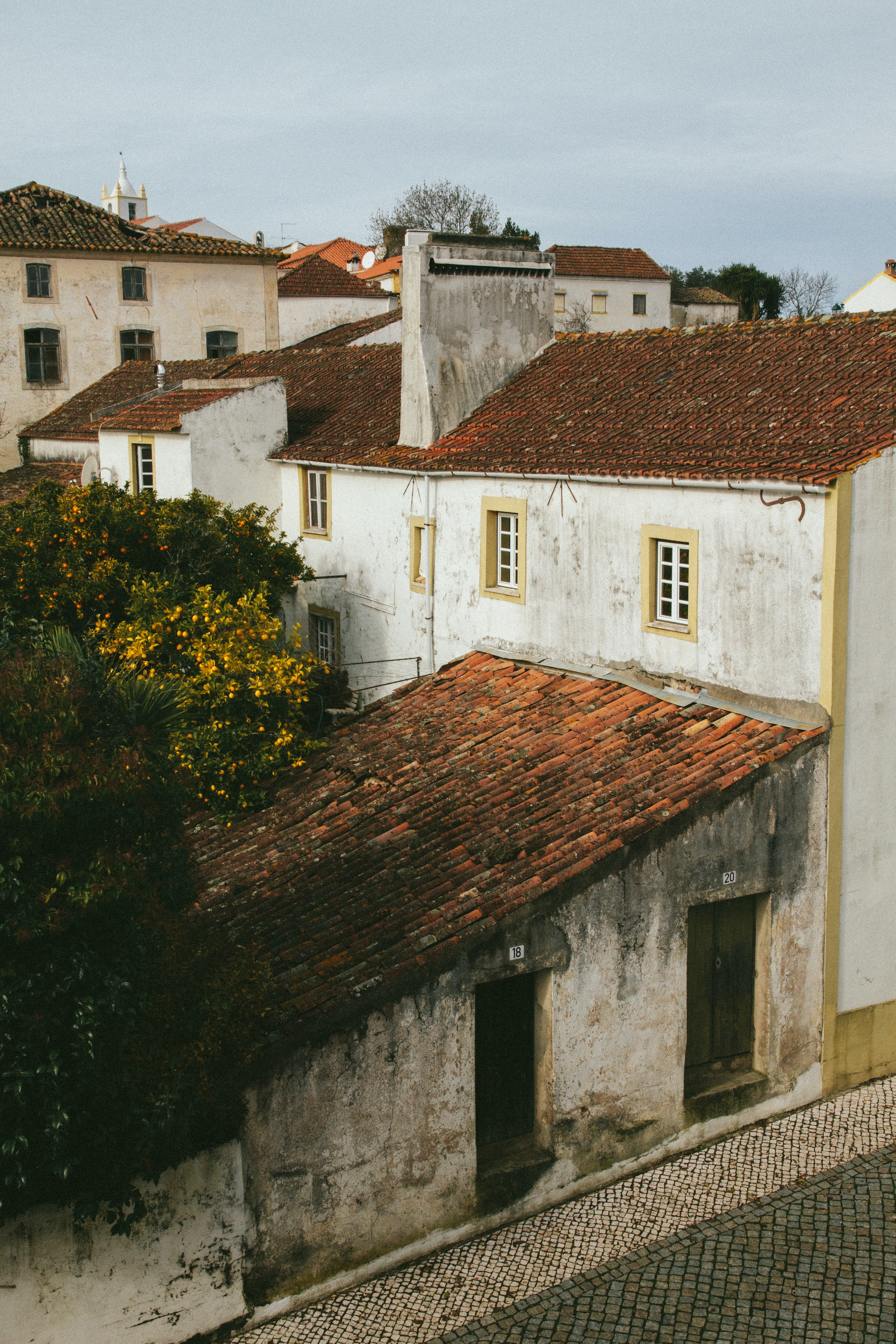 View of some white houses with red roofs and trees in the backyard