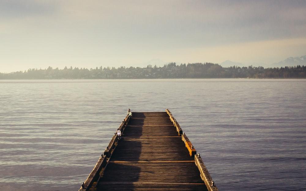 brown wooden dockside beside sea