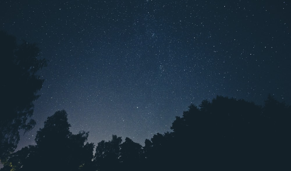 sky filled with stars photography during nighttime