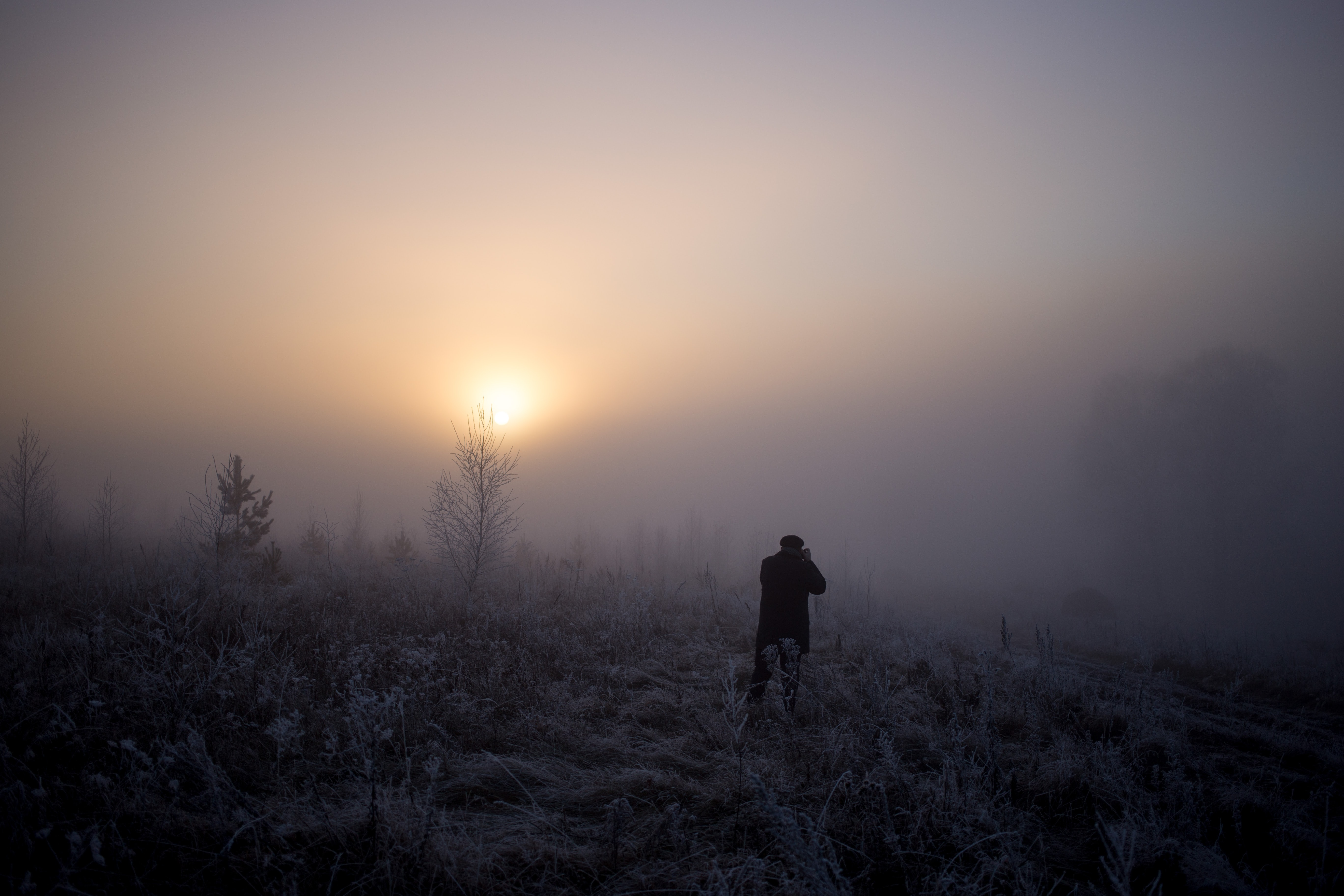 Silhouette of a photographer taking forest photos in the fog