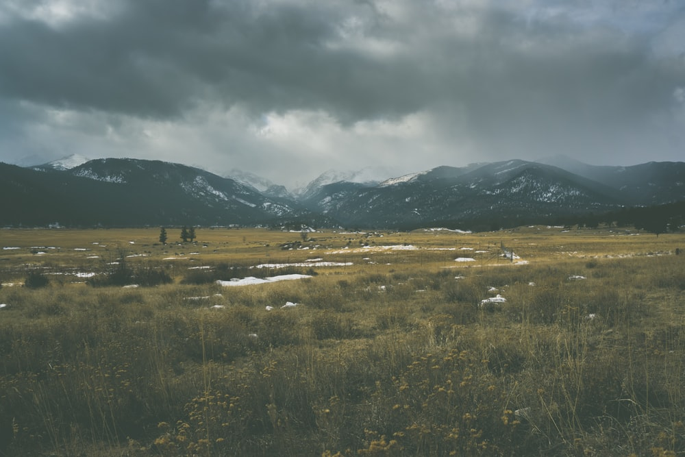 grass field near mountains