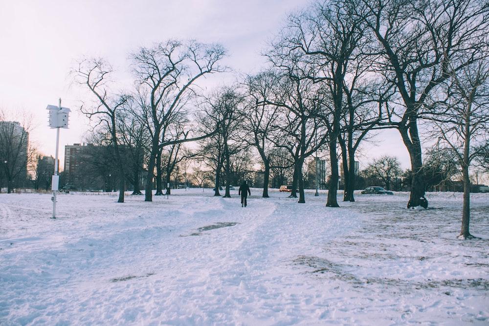 man walks on snowfield during winter