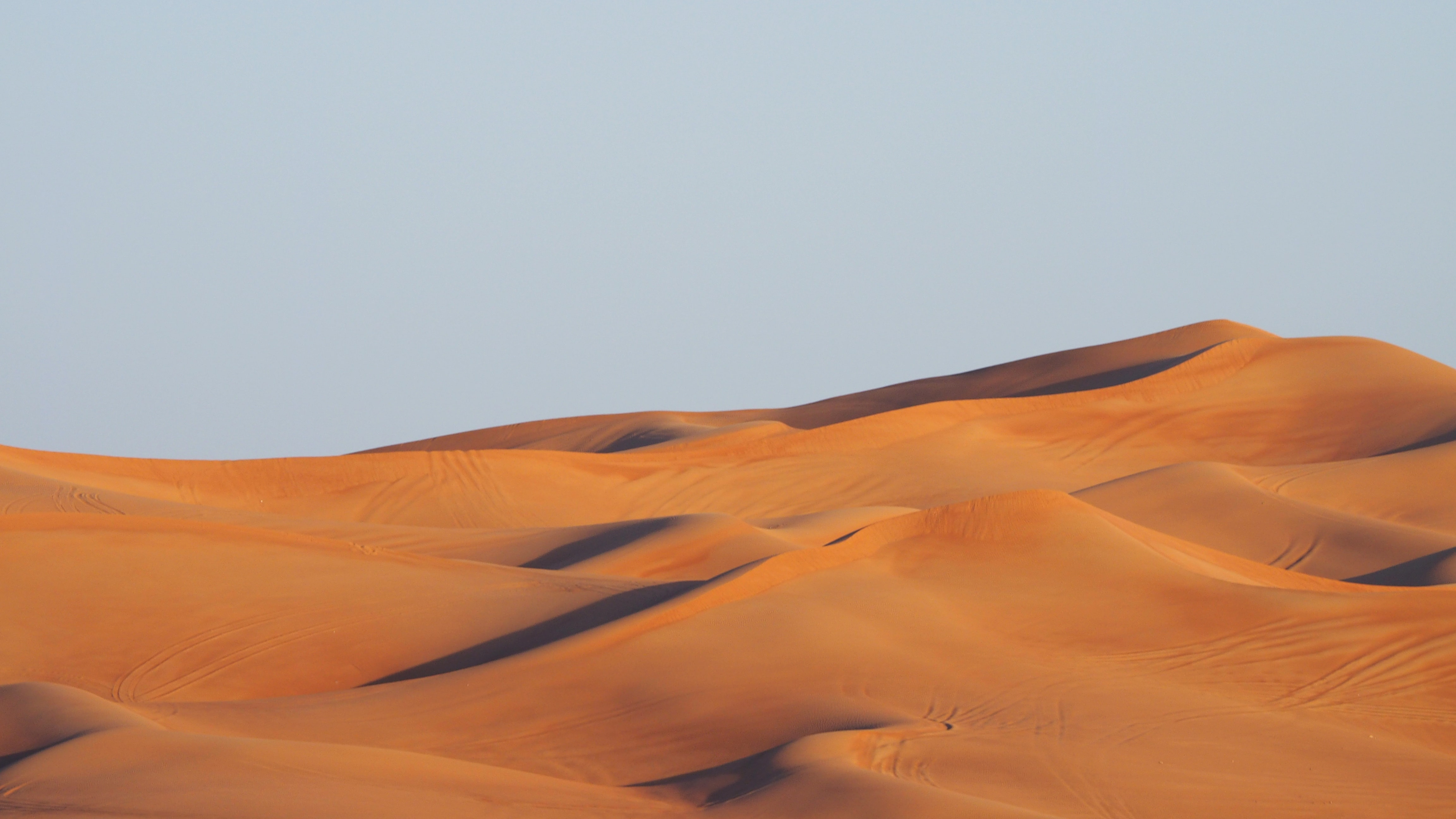 Rolling sand dunes in the Sahara