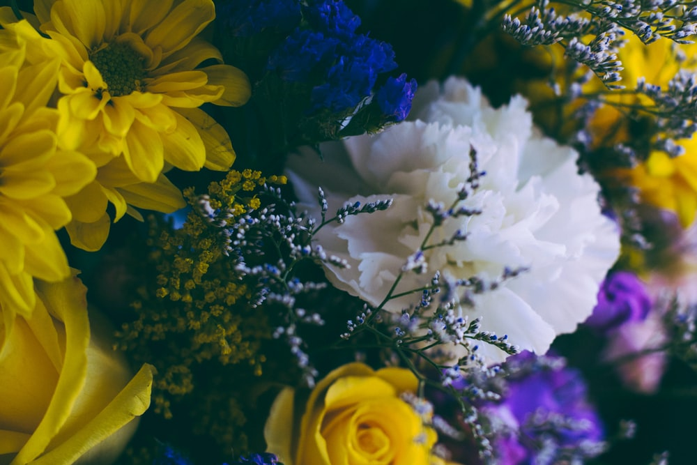 bouquet of assorted-color flowers