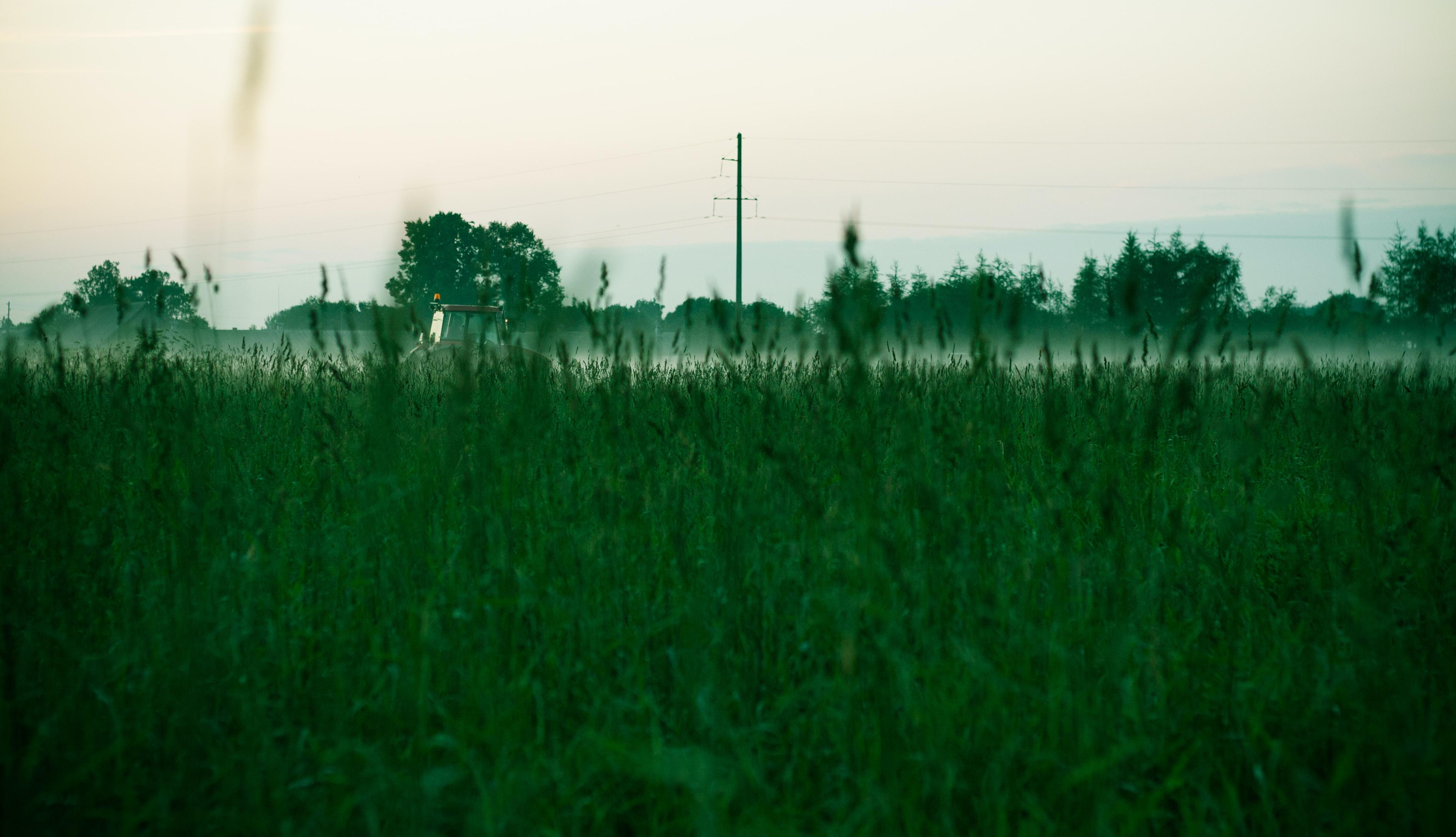 Free Unsplash photo from Maria  Pranka