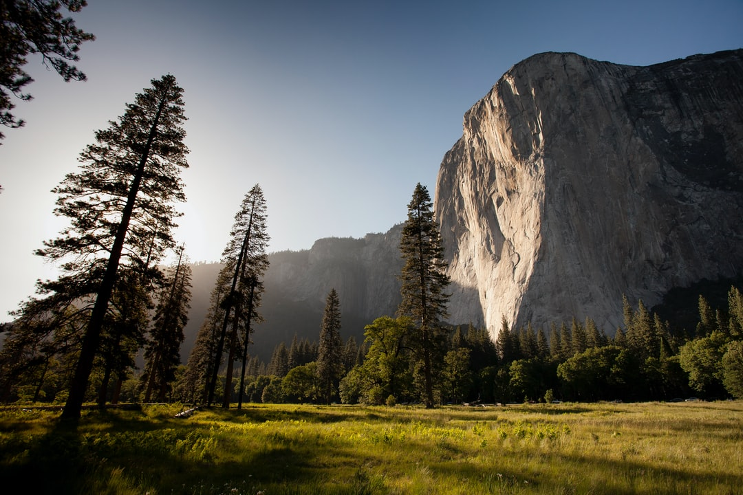 El Capitan On A Sunny Afternoon - unsplash