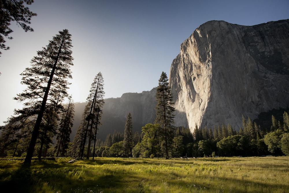 landmark photography of trees near rocky mountain under blue skies daytime