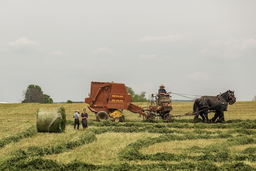 woman standing near brown combine harvester