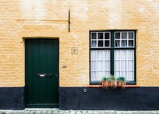 green plant near door