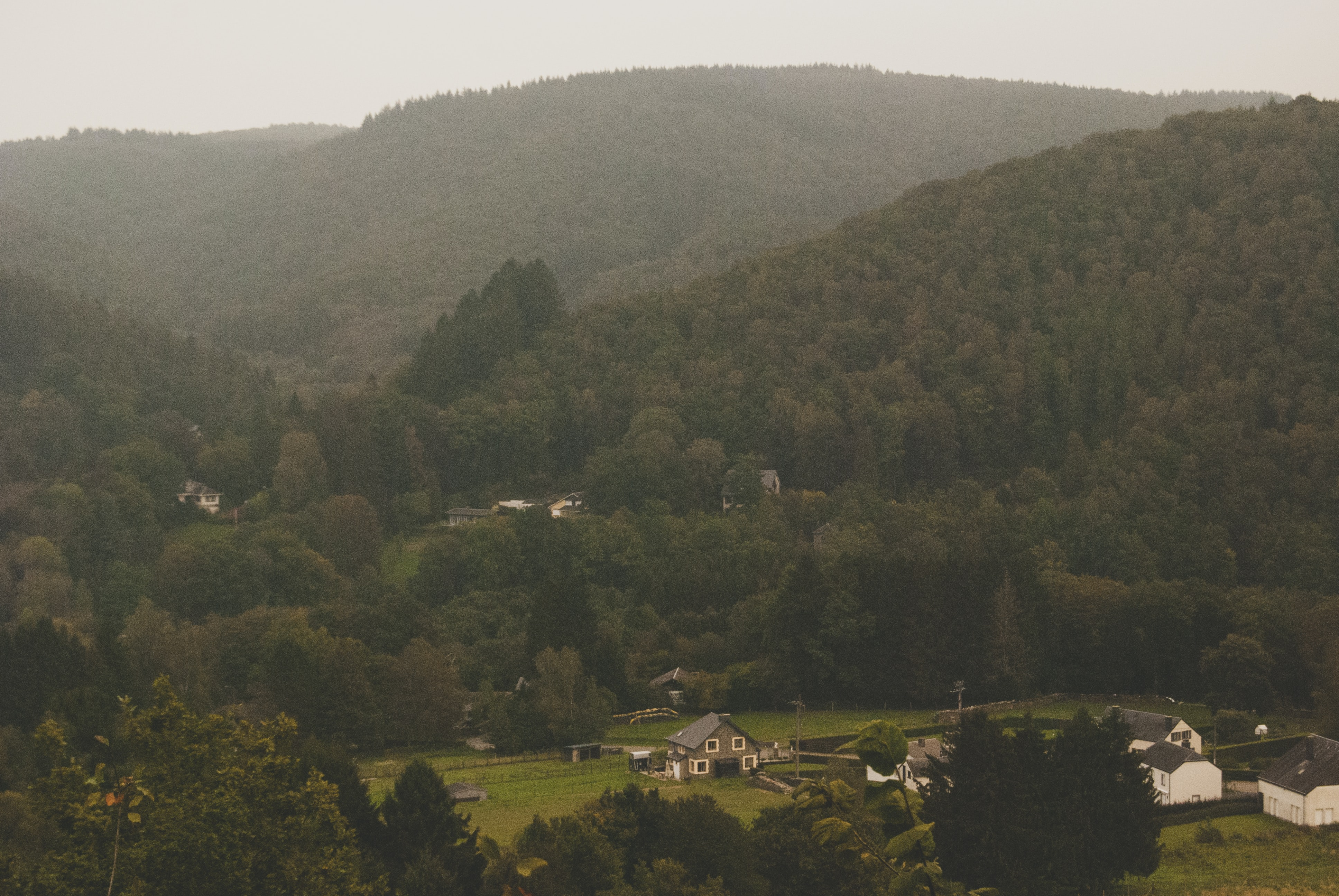 A fuzzy shot of a small village in a forested valley