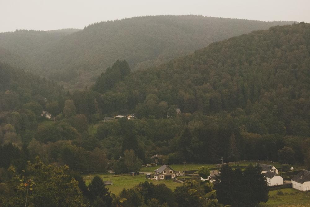 bird eyeview or village
