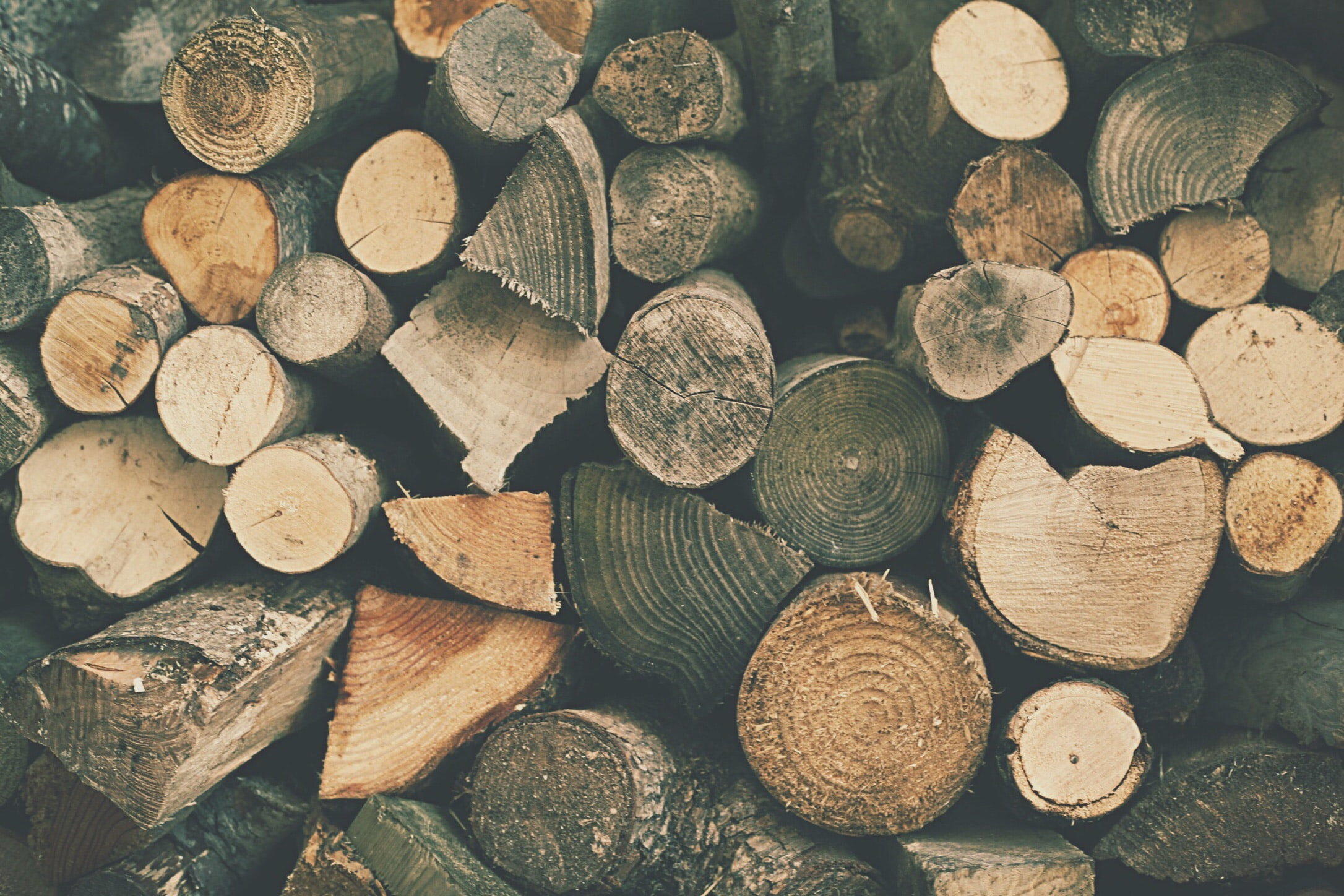 A stack of cut logs in various sizes and shapes