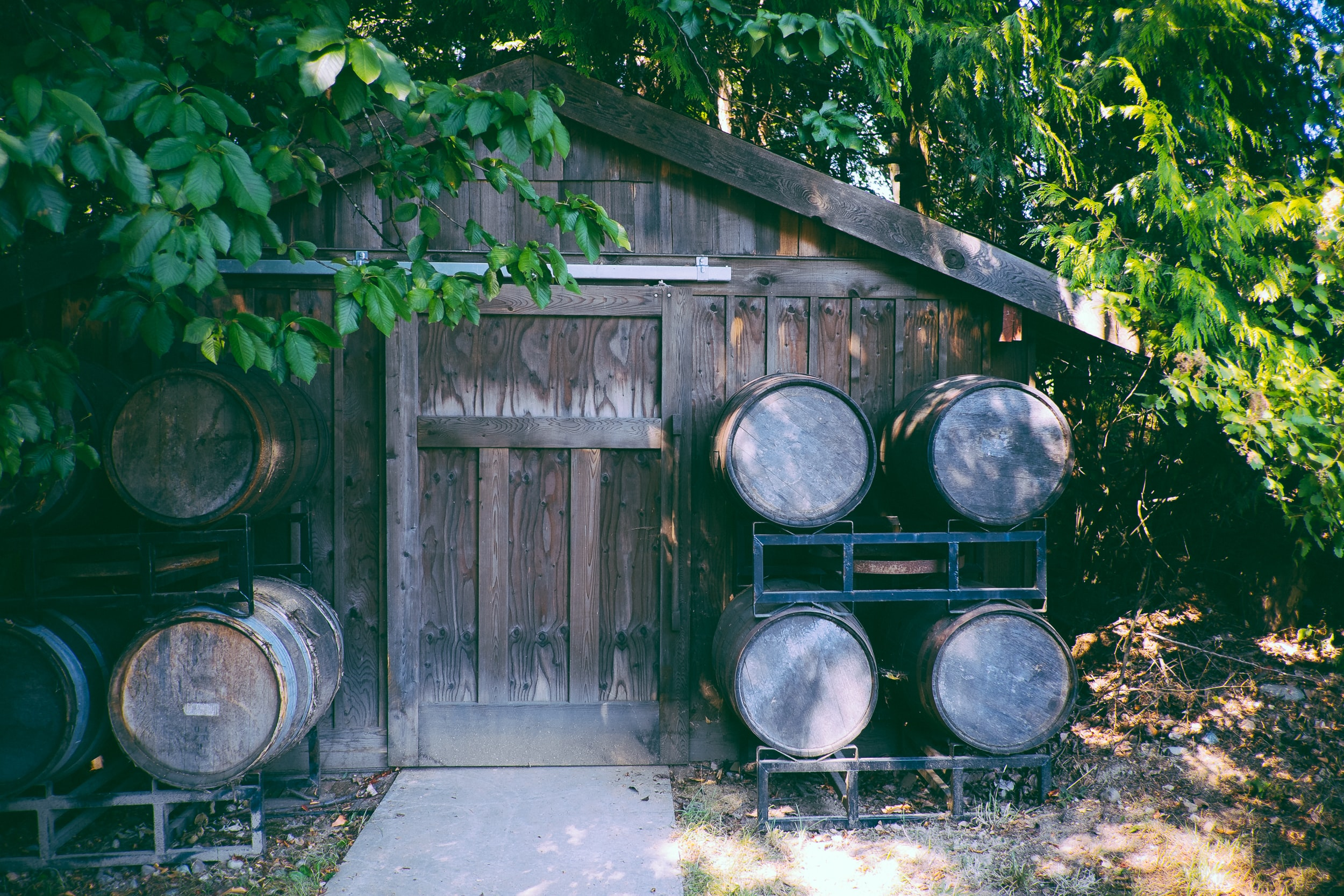 A wooden cabin surrounded by trees, with shelves of wooden barrels