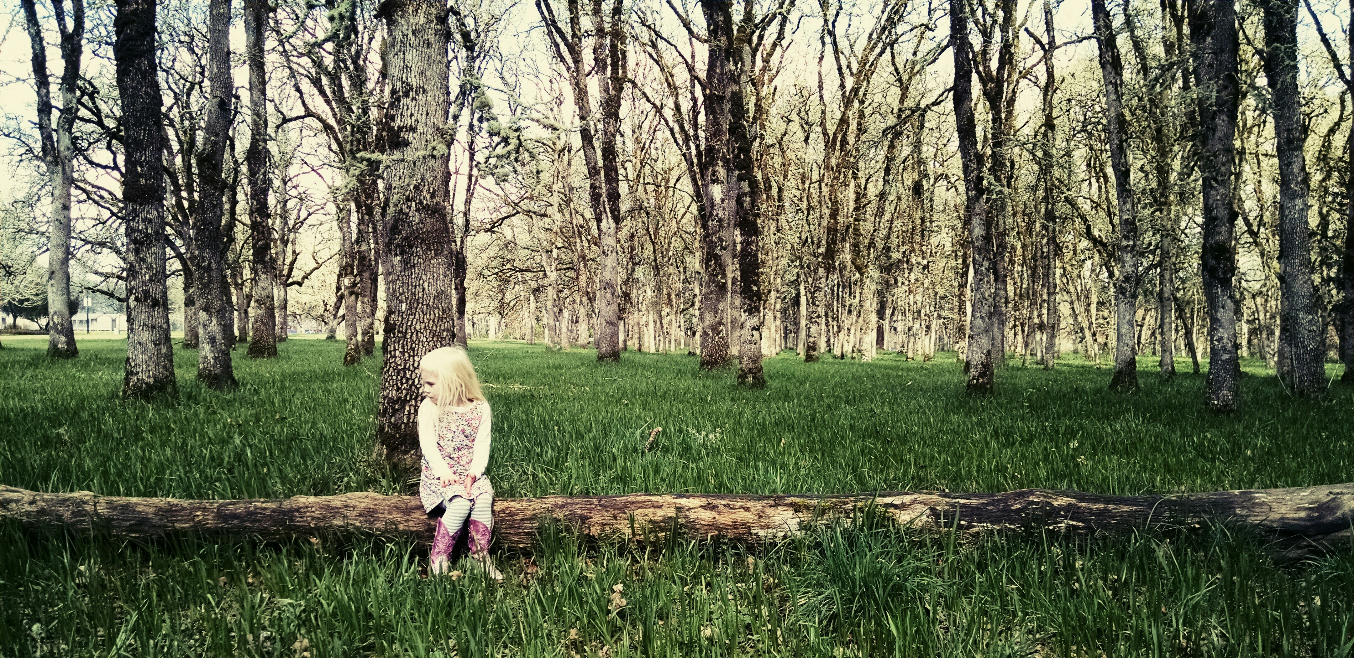 Little Girl Alone Forest Trees