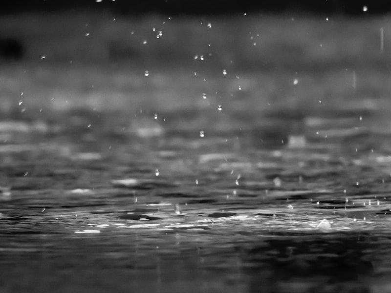 Ⓢ木曜雑談丨下雨了