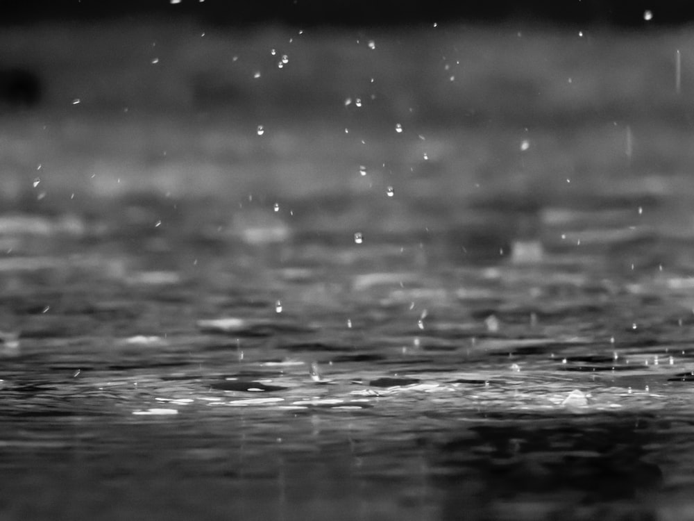 grayscale photography of raindrops