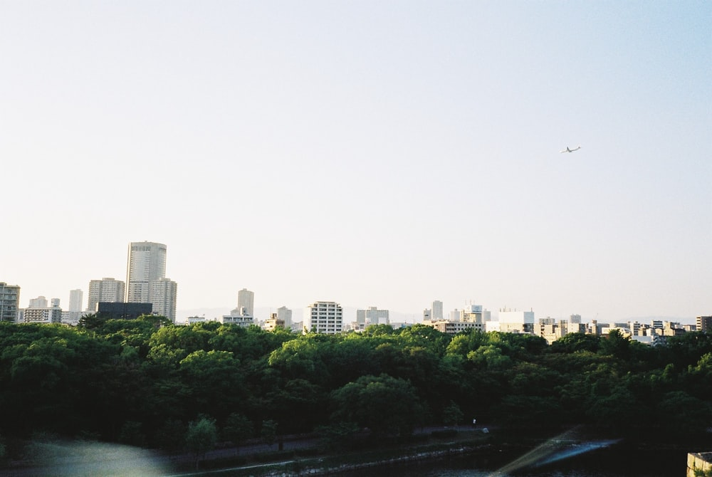 city buildings and green trees during daytime