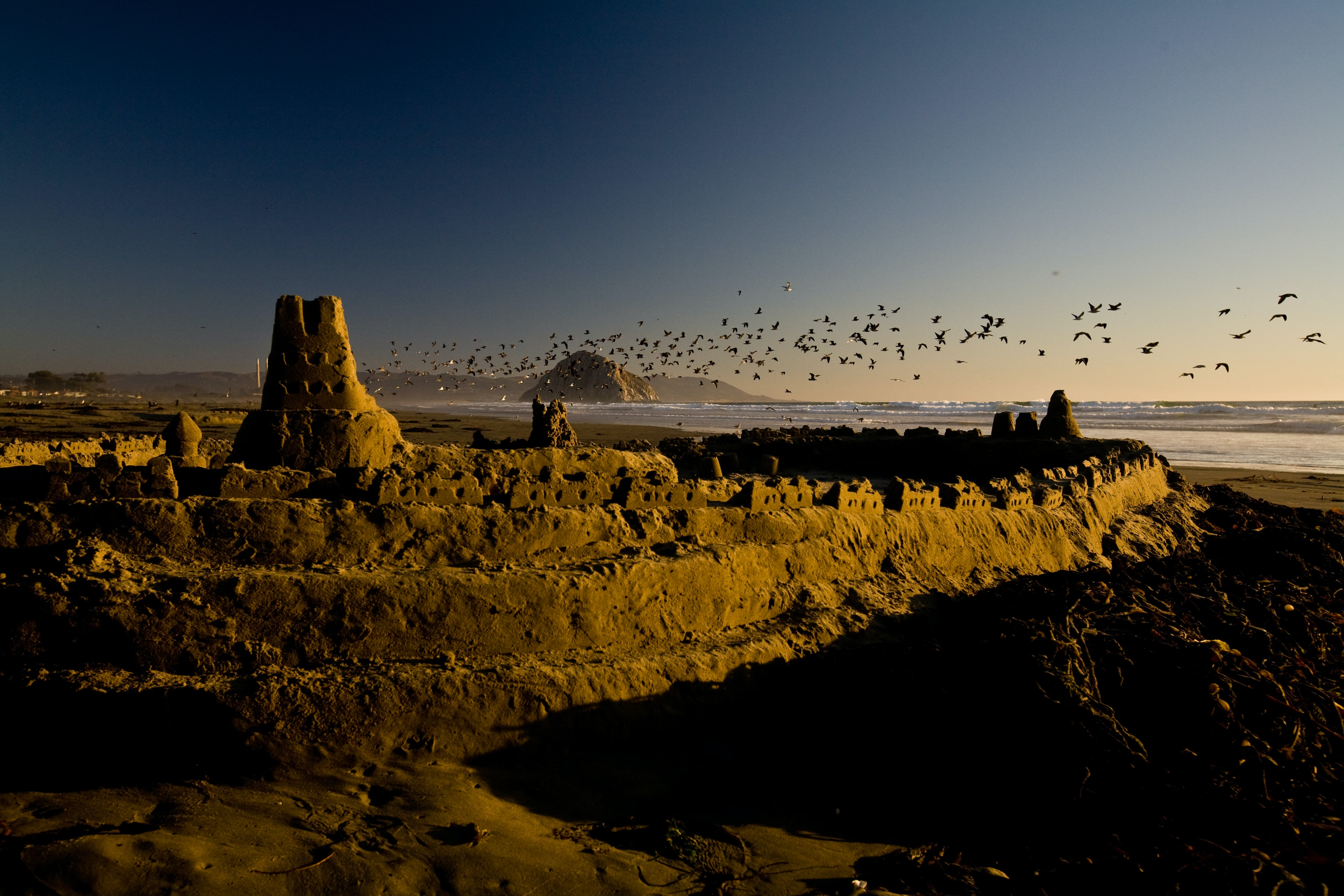 A close up of a sand castle on a beach with a flock of birds in flight over the sea