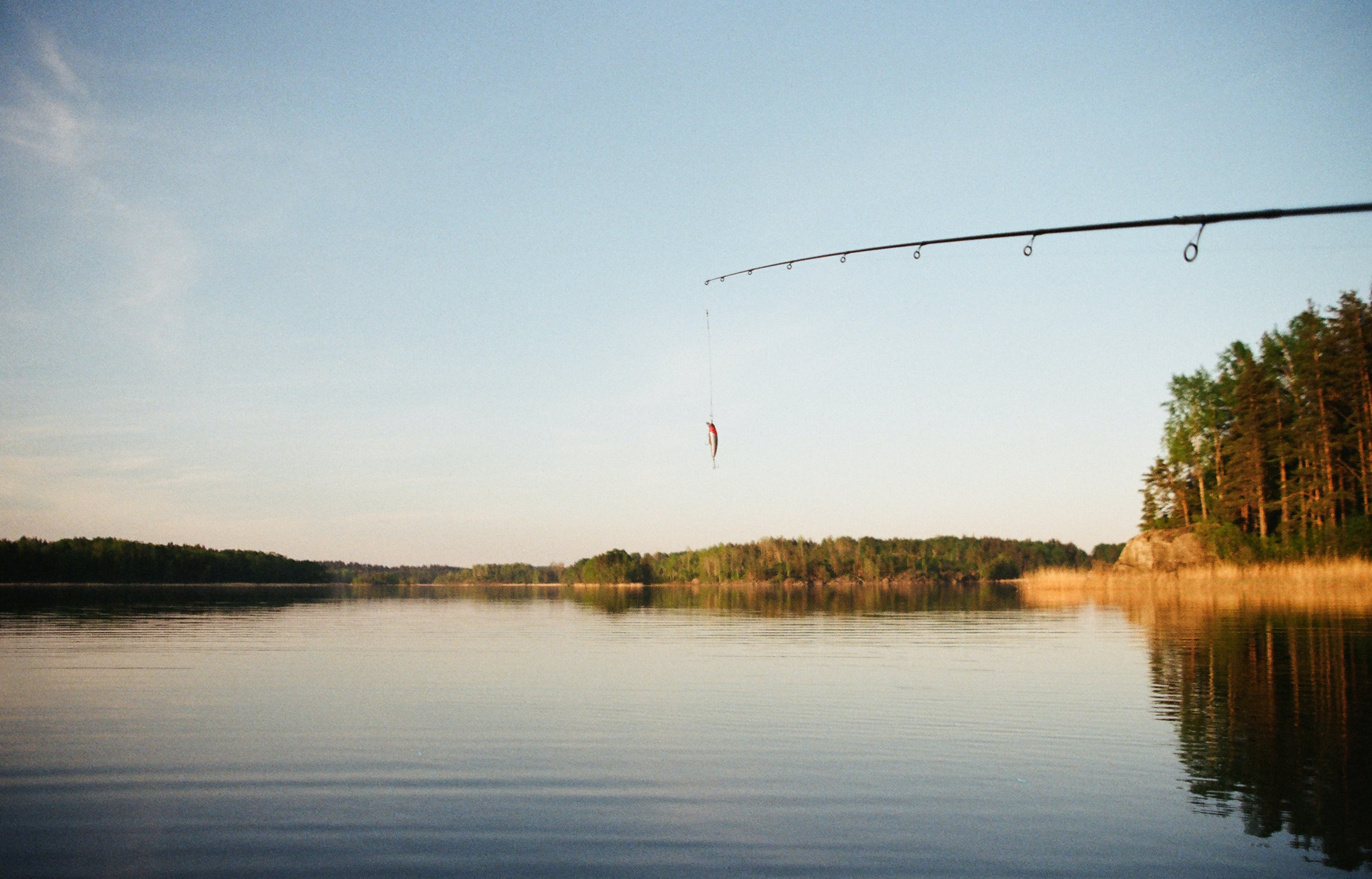 A fishing rod with a fish dangling on the line over a lake