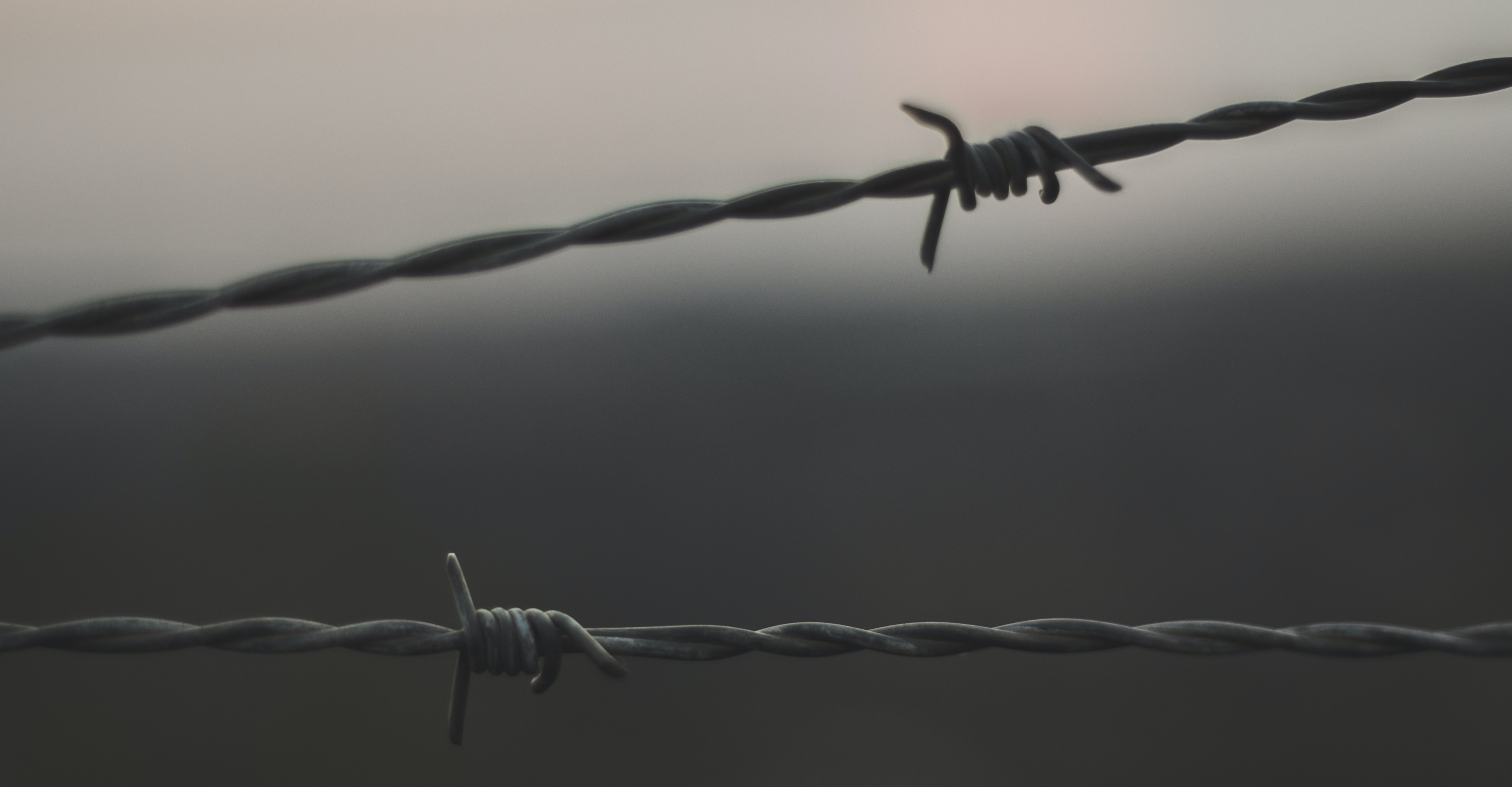 focus photo of gray barb wire