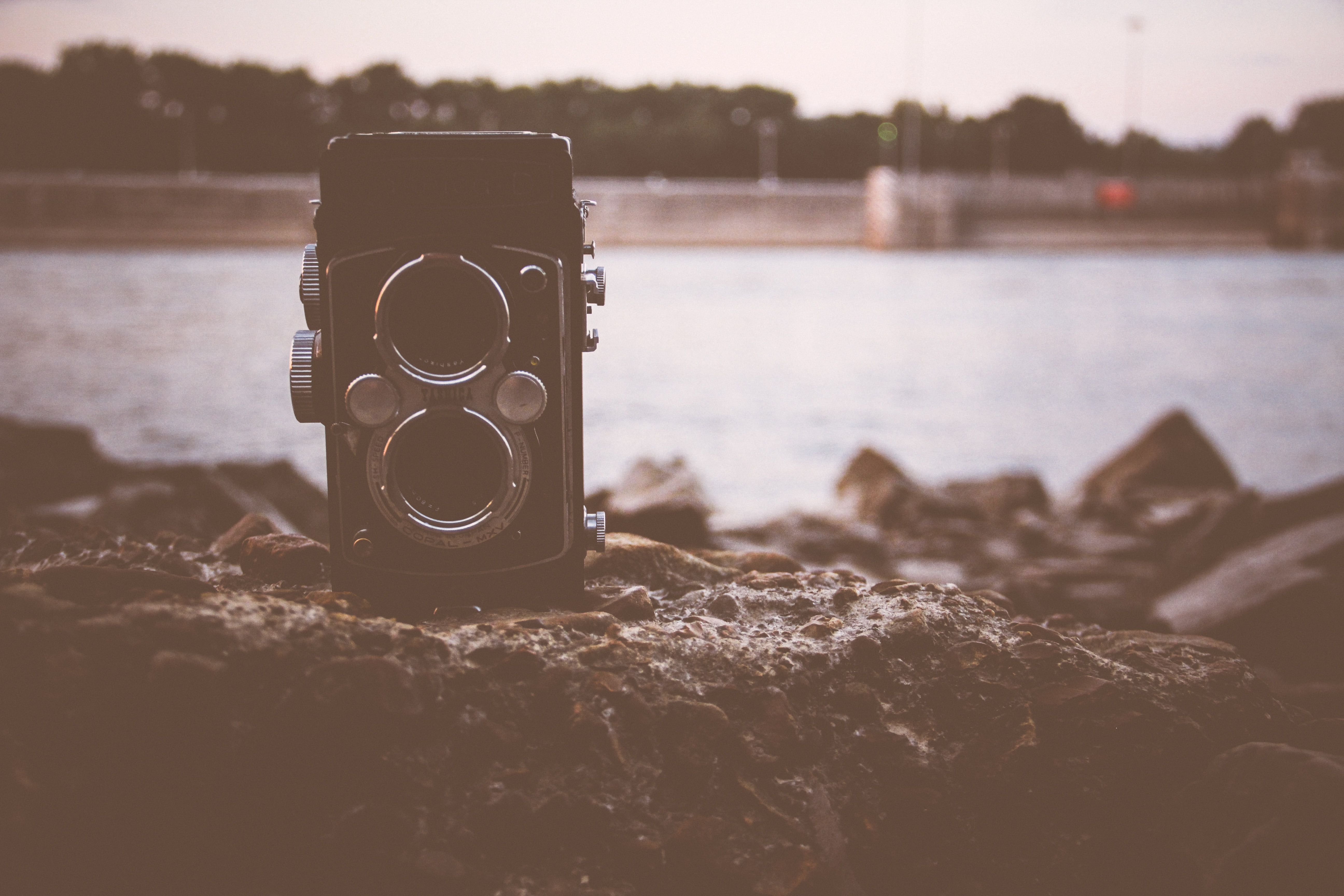 black land camera on rock in front of body of water during daytime