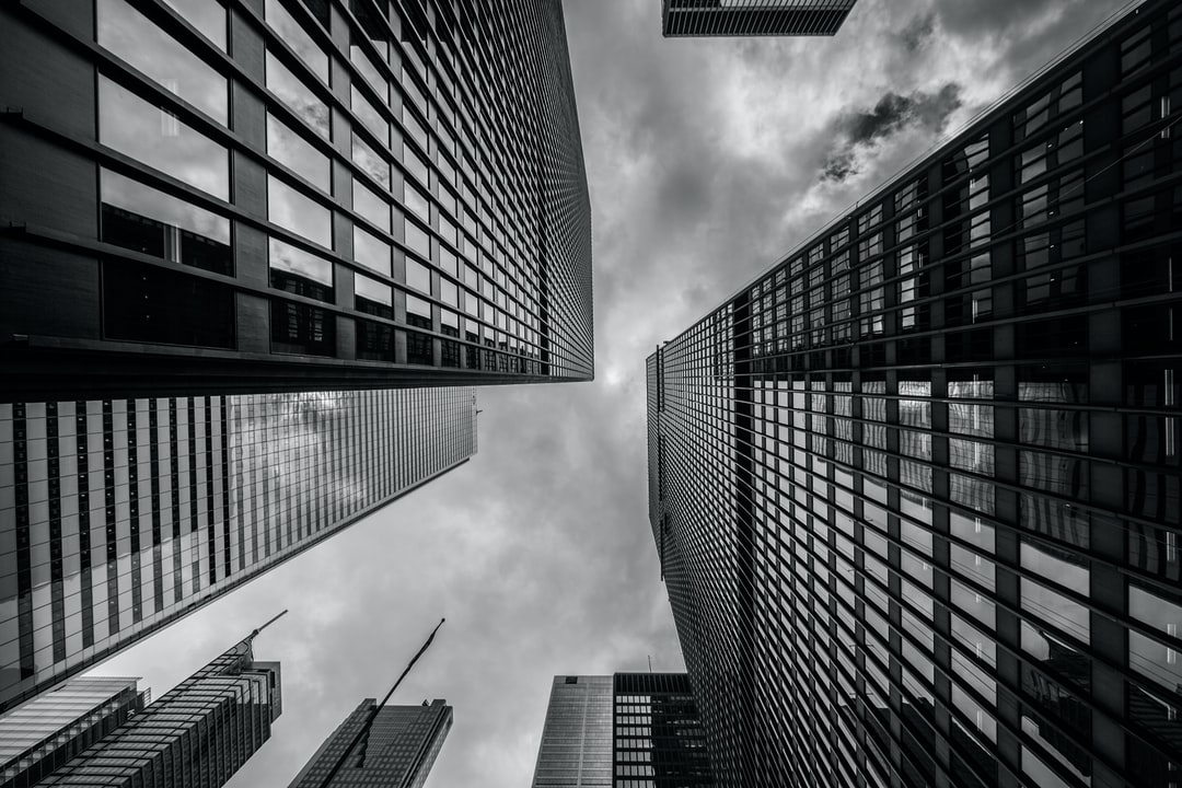 High-rises in black and white