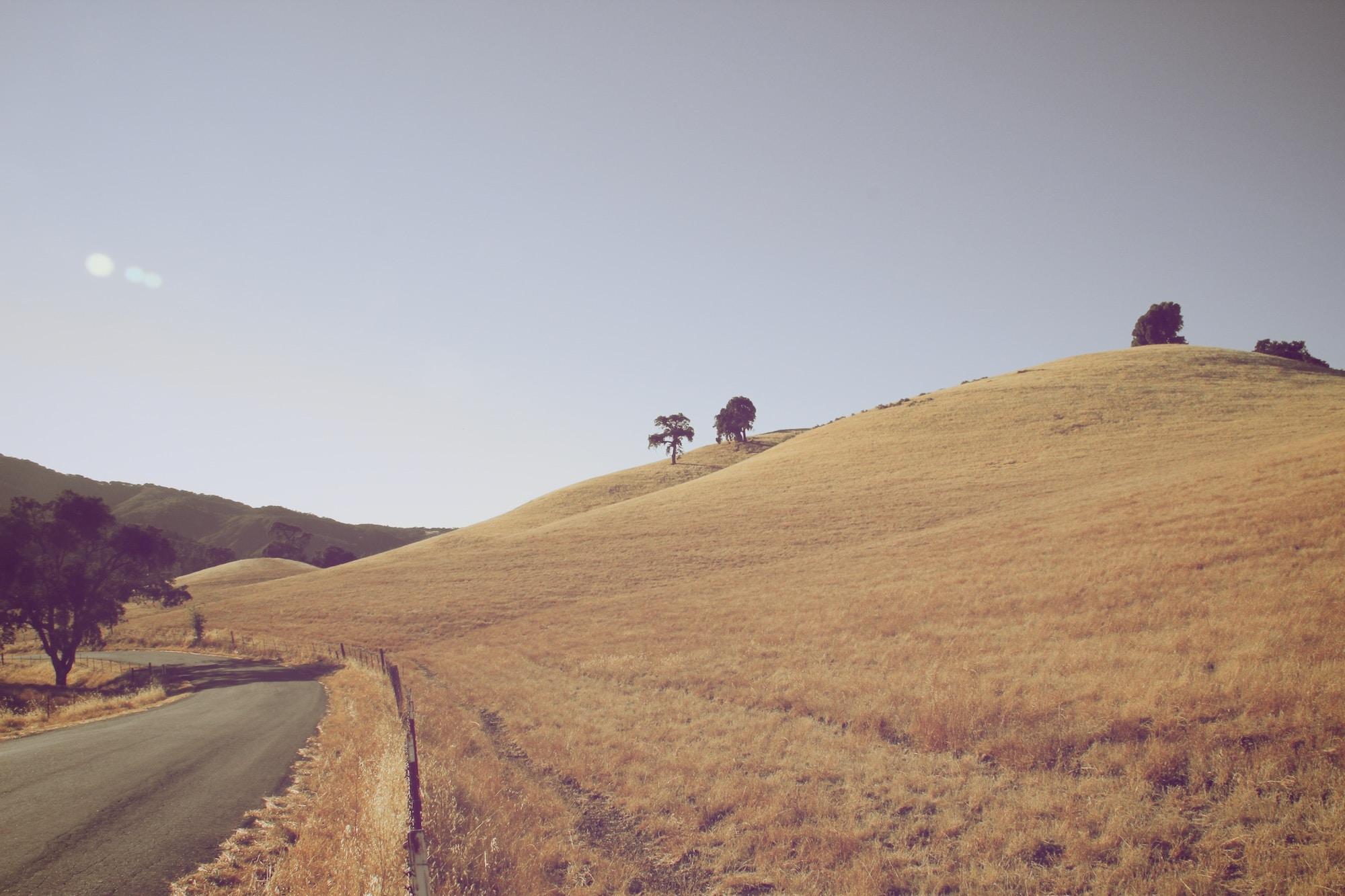 Barren country hillside next to a rural road