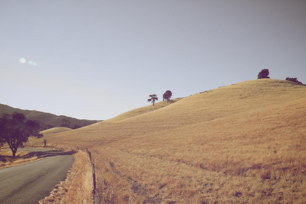 landscape photo of road beside field of grass