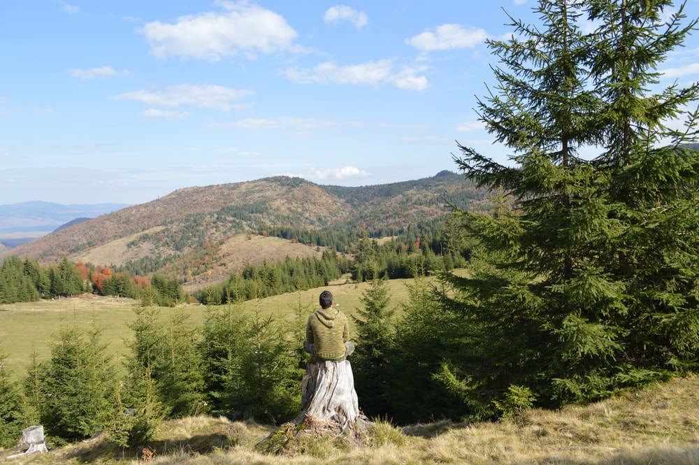man sitting alone on tree stump facing green trees and mountain under clear blue cloudy sky