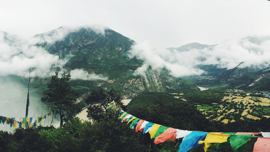 Bunting in the mountains
