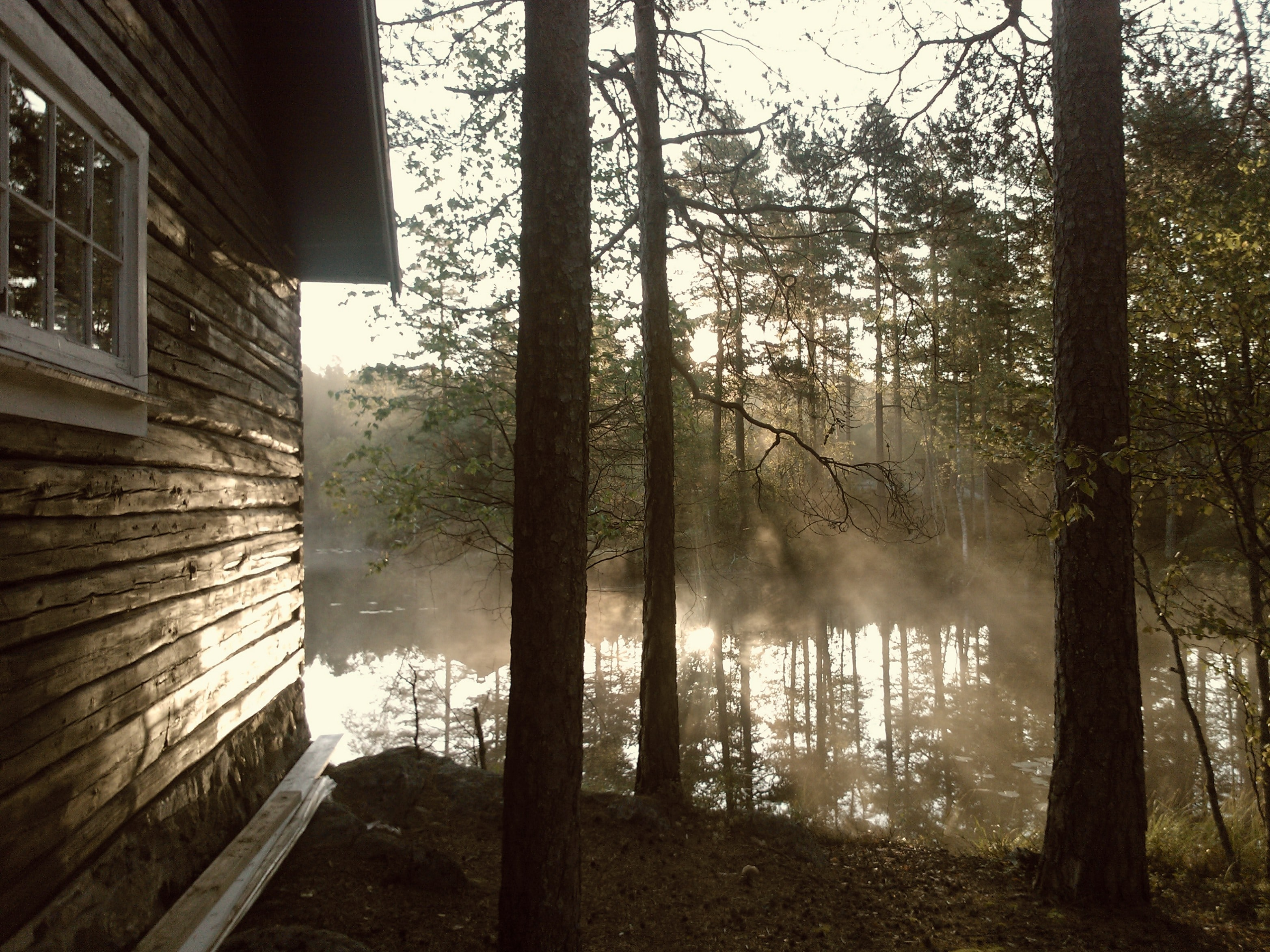 A cabin wall near a misty body of water with sunrays shining through the trees
