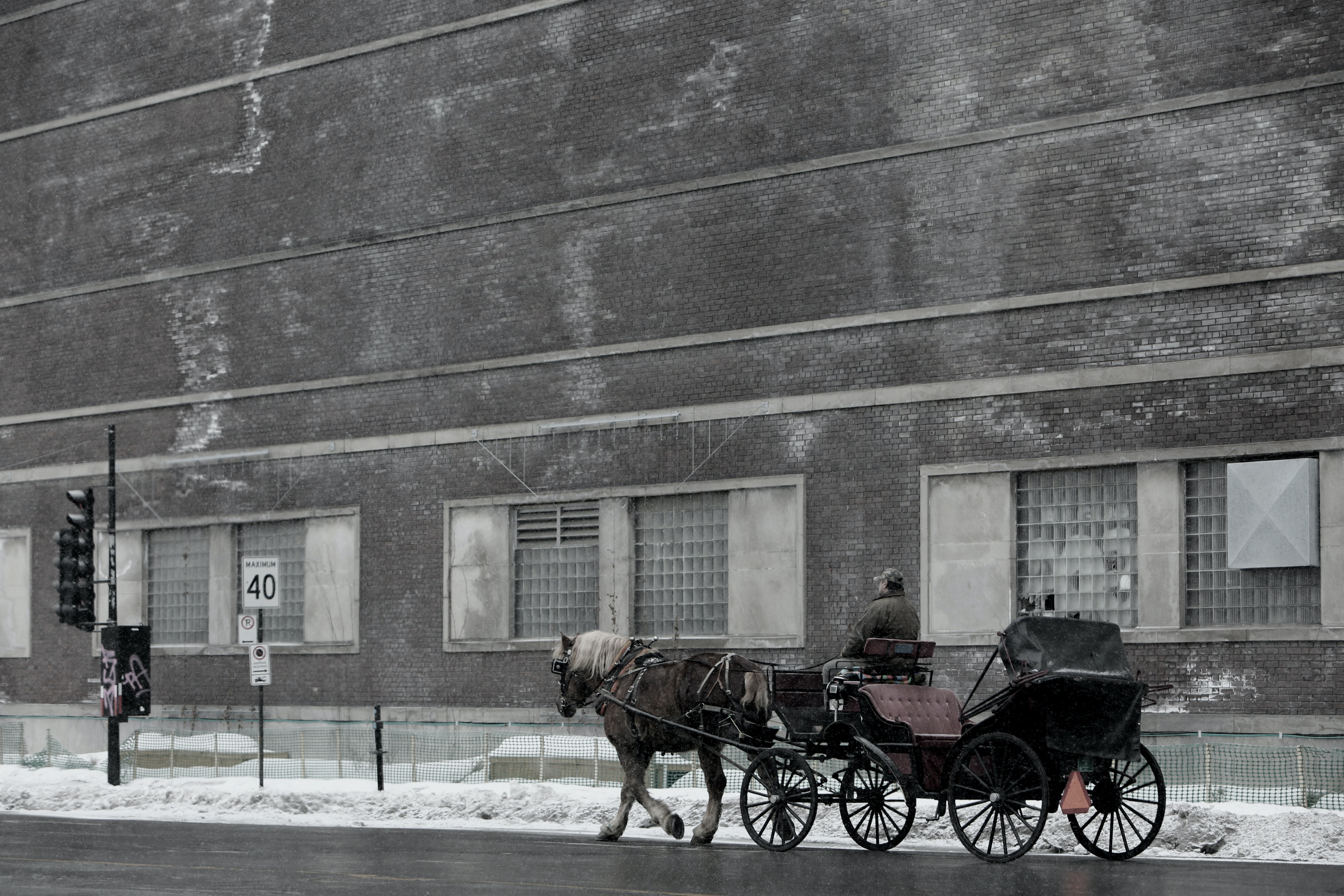 A desaturated shot of a man on a carriage pulled by a horse