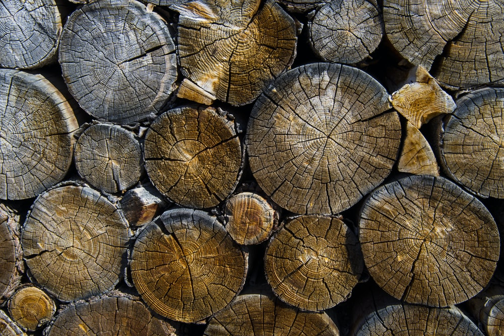 photography of pile of woods