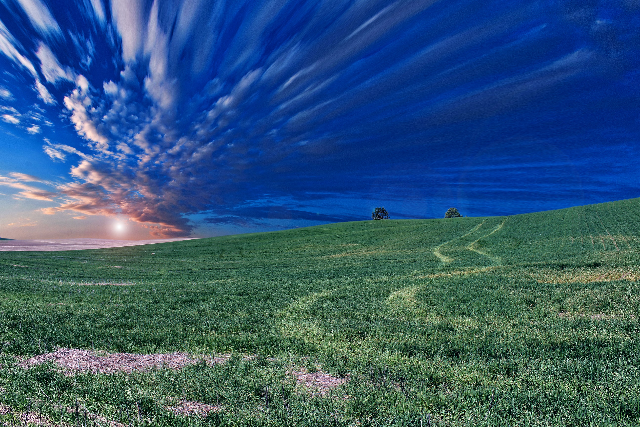 A grassy meadow in a rural area with the sky filled with fluffy clouds during sunset