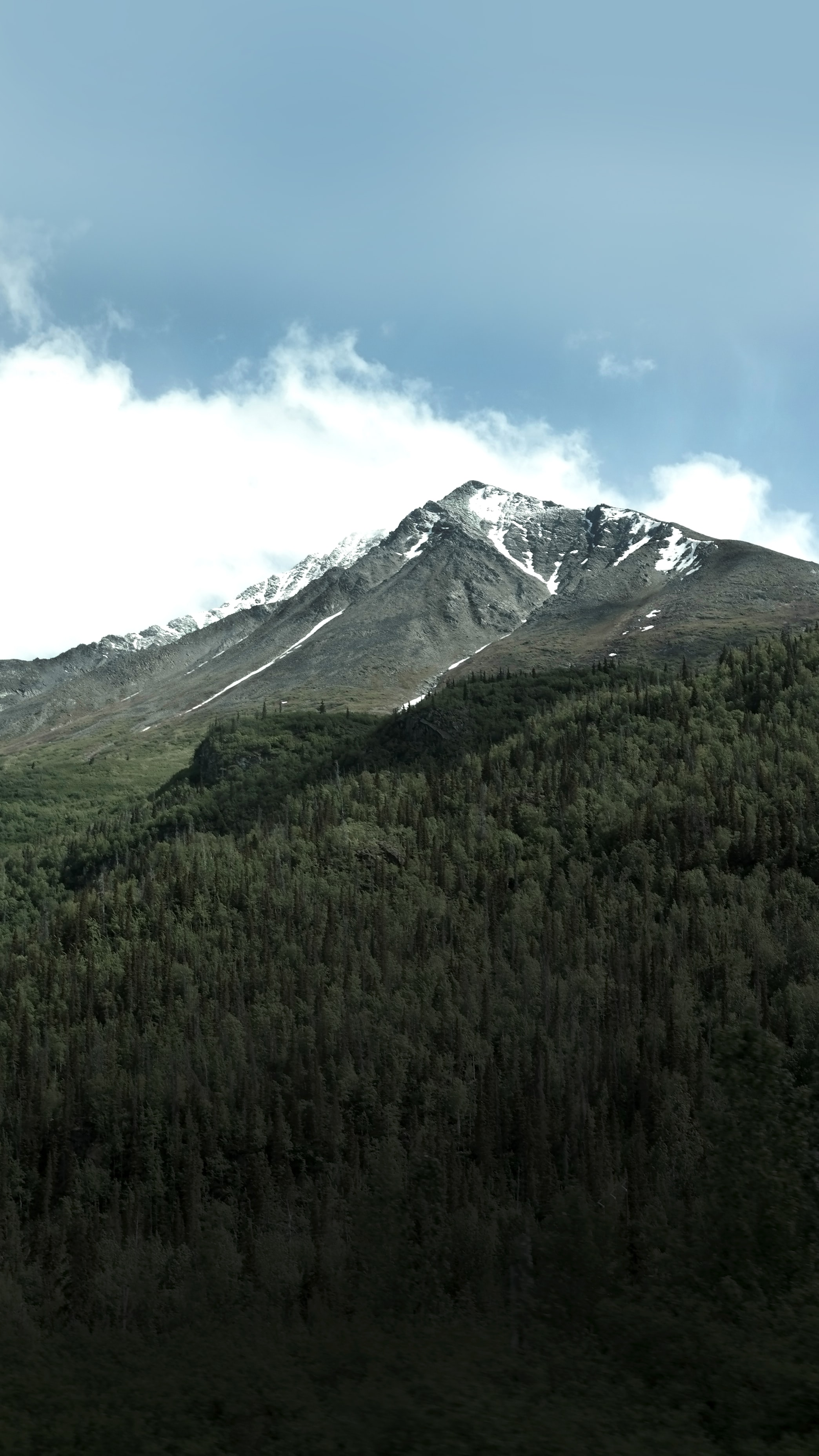 A long wooded slope of a snow-crested mountain
