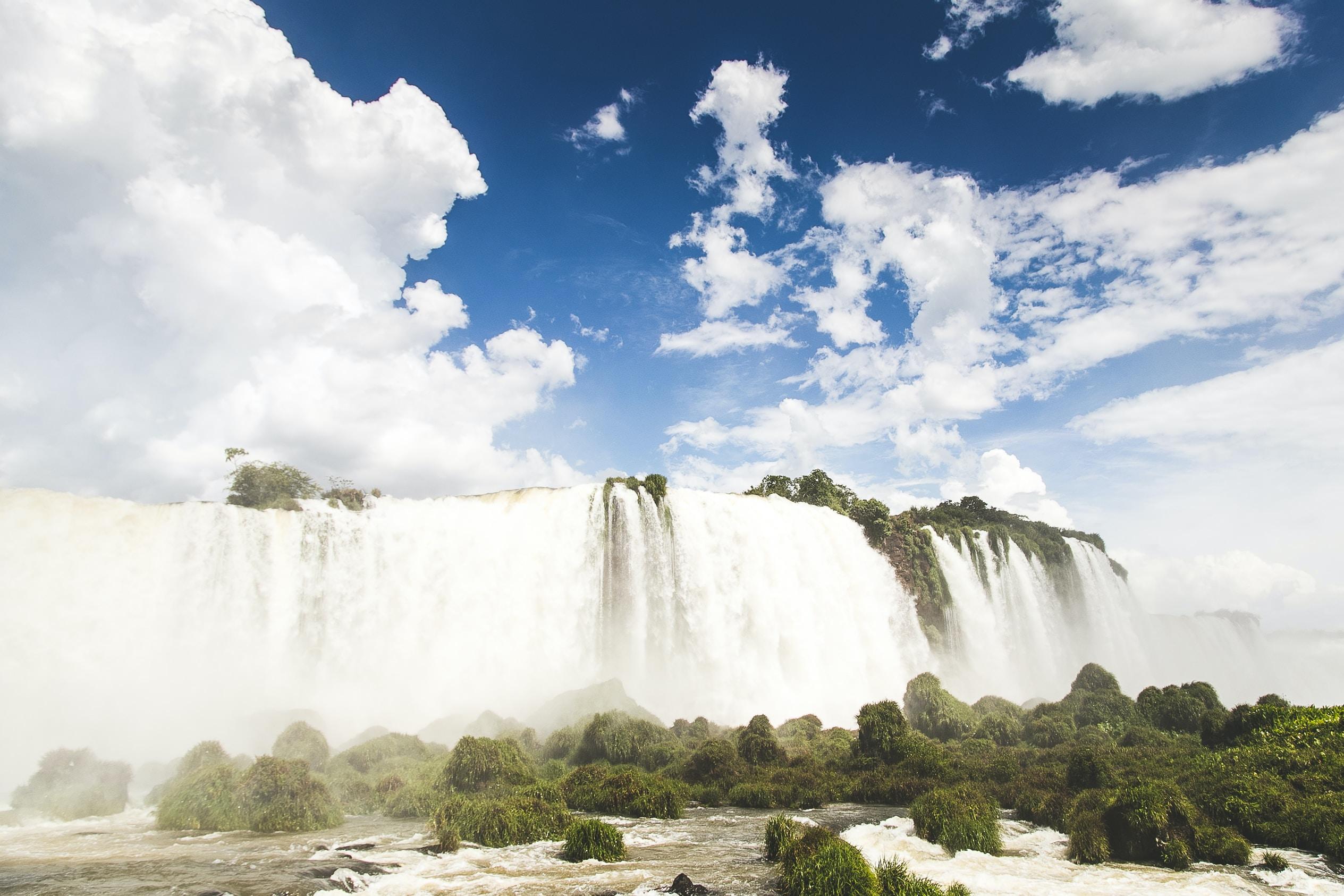 waterfalls raging through trees