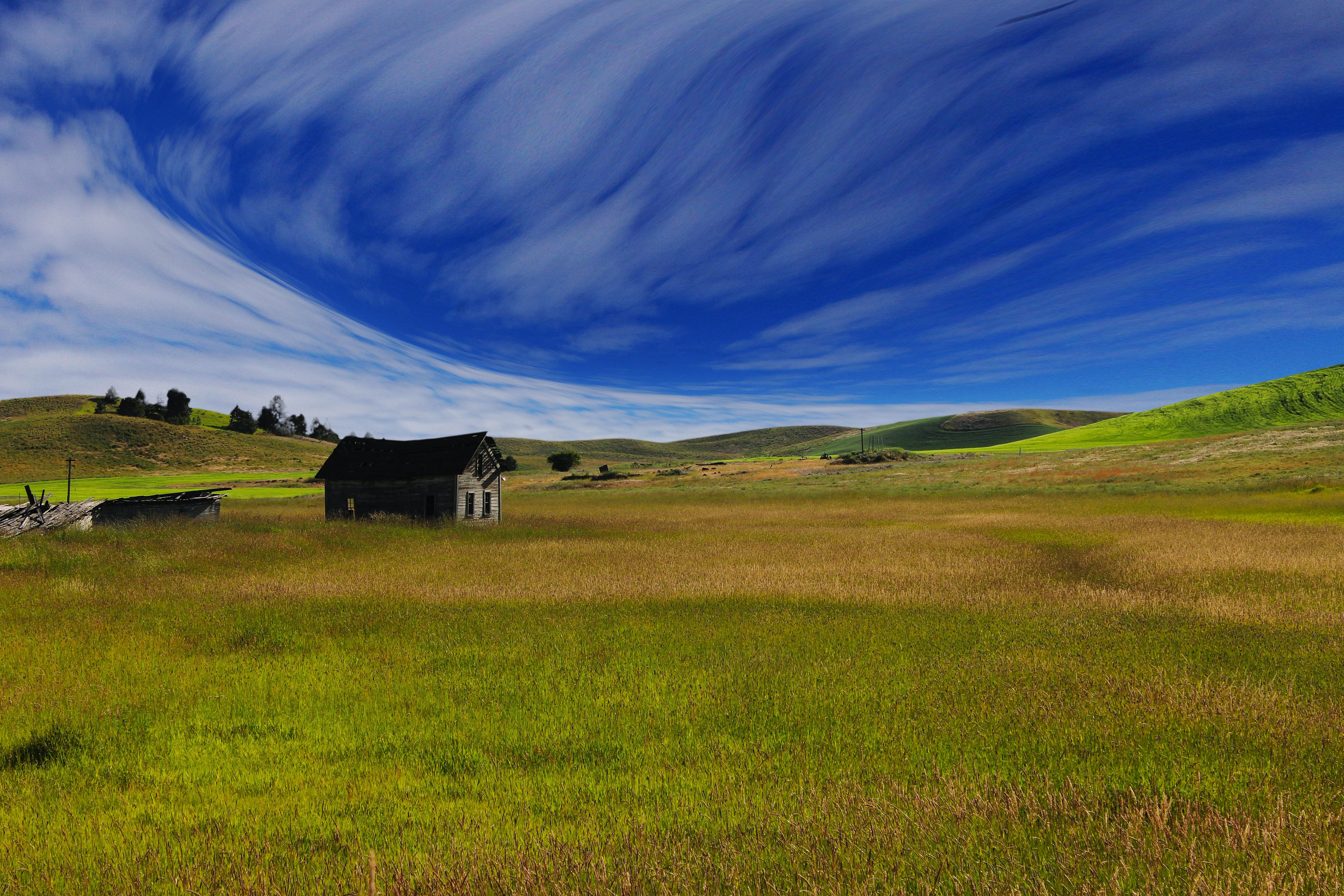 house on green grass field