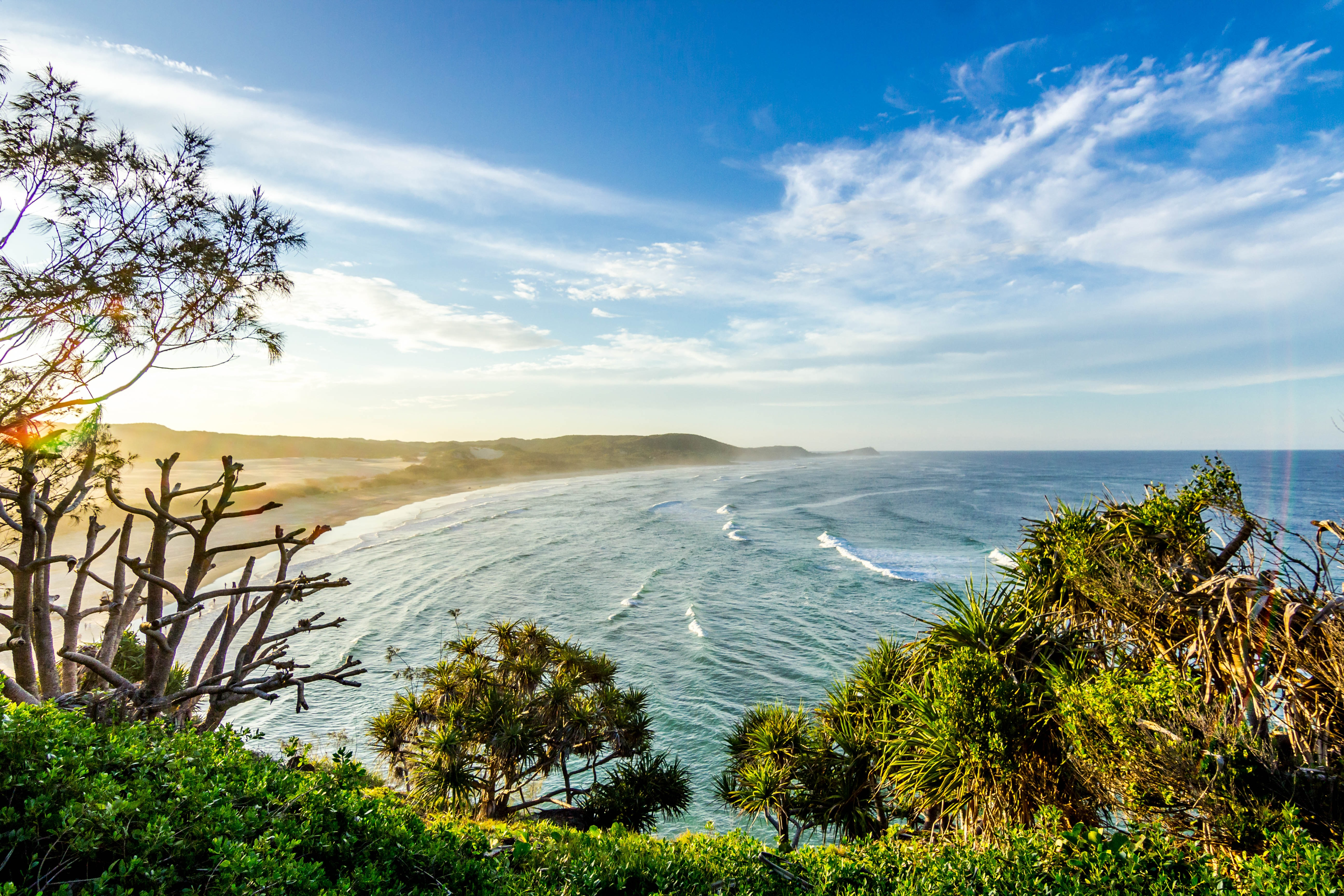 A sunlit coastline covered in green shrubs stretching towards the horizon