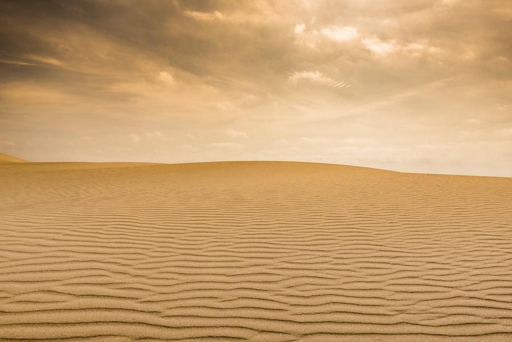 photo of desert field