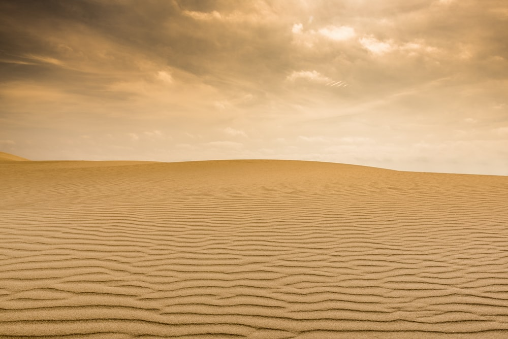 photo of desert field