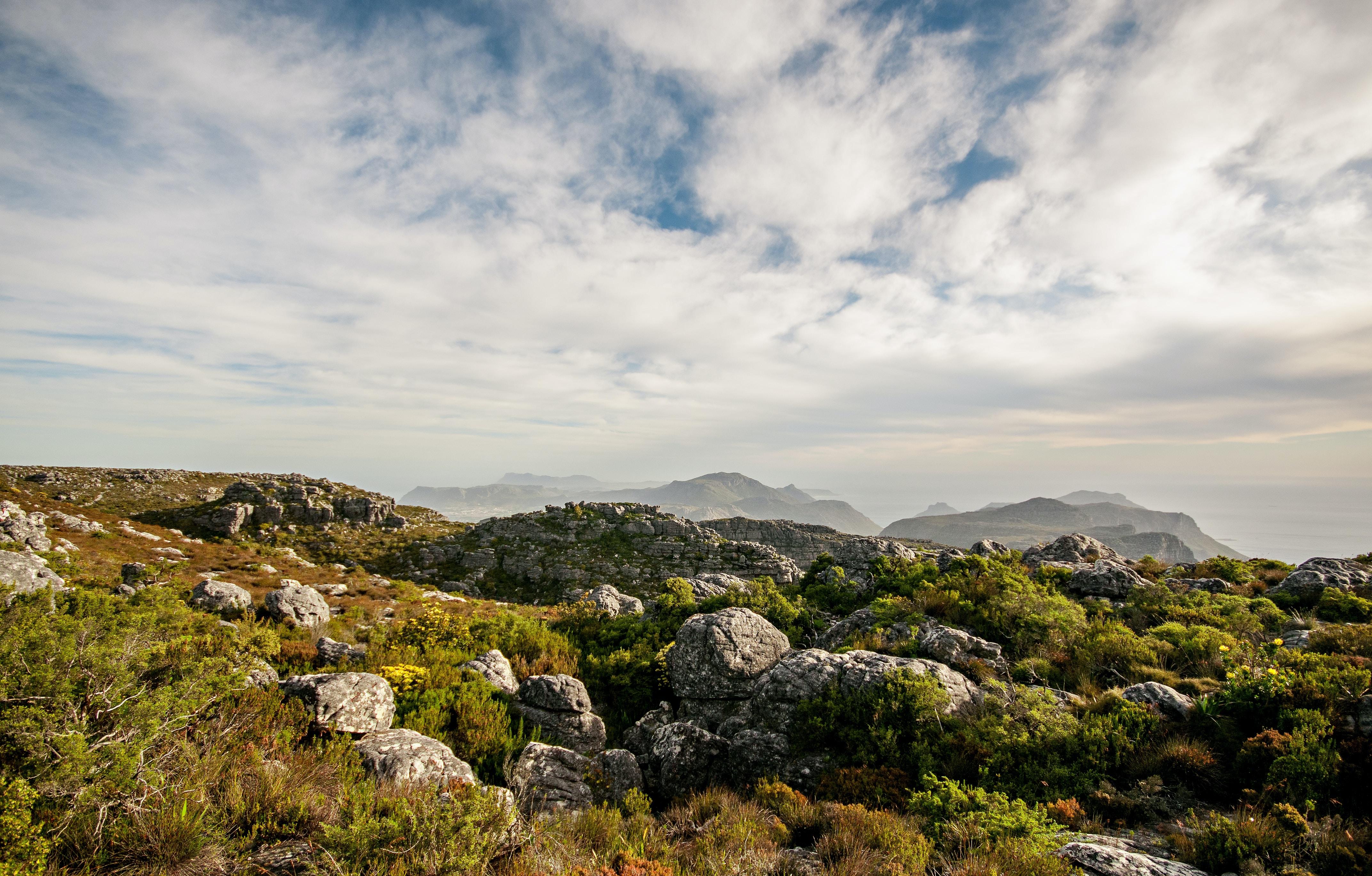green bosh mountain landscape